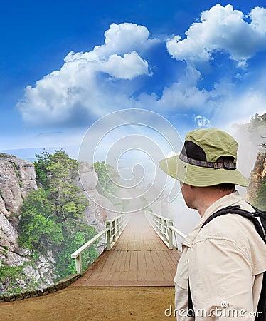 Ponte di legno del parco scenico