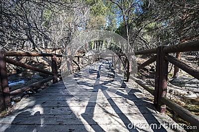 Ponte Di Legno Sopra Il Fiume Manzanarre Fotografia Stock - Immagine: 76171421