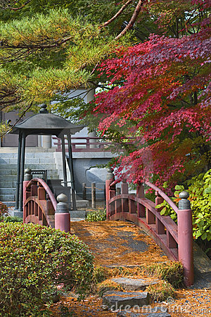 Ponte japonesa