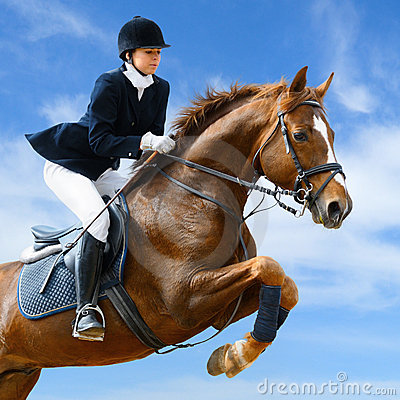 Ponticello equestre
