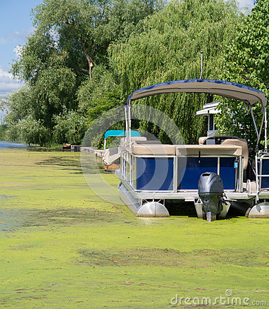 Pontoon Boat in Algea