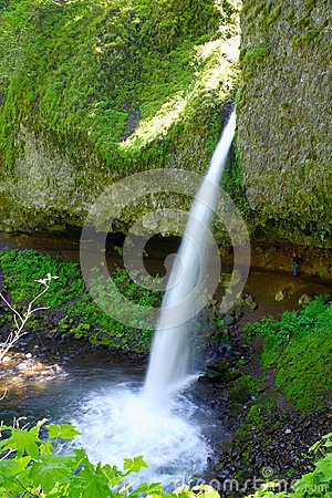 Free Ponytail Falls In Columbia River Gorge, Oregon Royalty Free Stock Images - 103205589