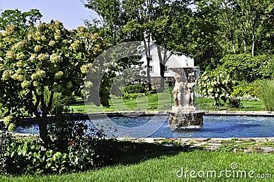 Pool Nature Garden