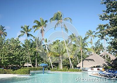 Pool at Tropical Resort