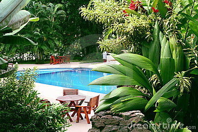 Pool in tropical setting