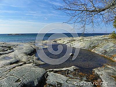 Pooled water at rock shore