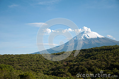 Popocatepetl and forest