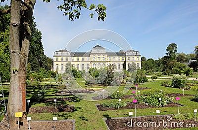 Poppelsdorf Palace in Bonn