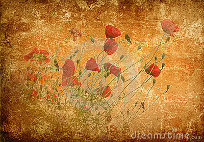Poppies on a grunge background