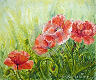 Poppies, , oil painting