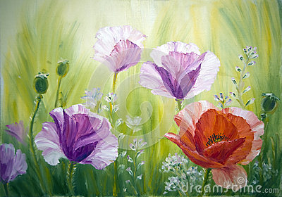 Poppies , oil painting on canvas