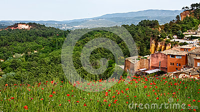 Poppies in Roussillon
