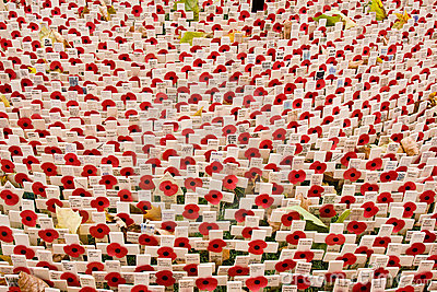 Poppies at Westminster Abbey on Remembrance sunday Editorial Photo