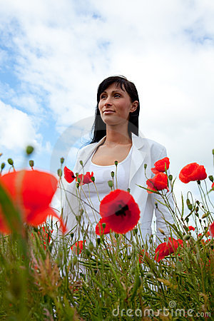 Free Poppy Business Stock Photos - 9836713