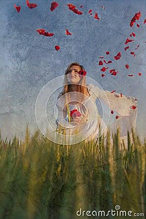 Free Poppy Fairy Royalty Free Stock Image - 43964366