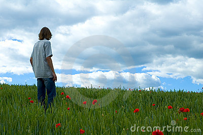 Poppy field and man