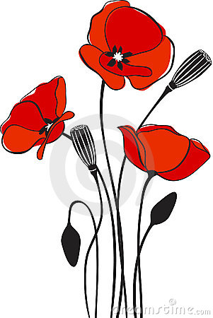 Poppy floral background 2