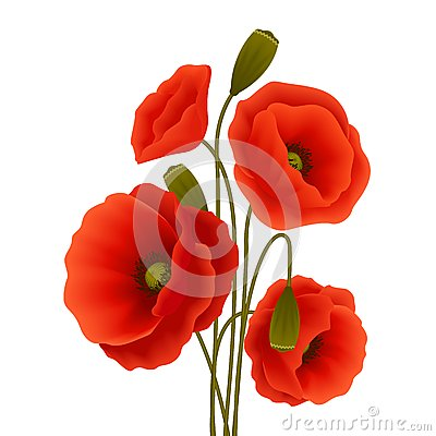 Free Poppy Flower Poster Stock Image - 39738641