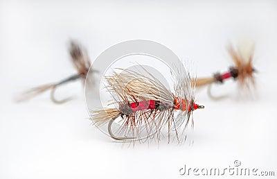 Popular dry flies