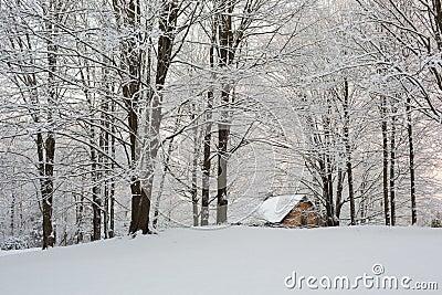 Esconderijo da Máfia Russa [Floresta Yuntúlovskaia] Por-do-sol-nevado-de-nova-inglaterra-35997842