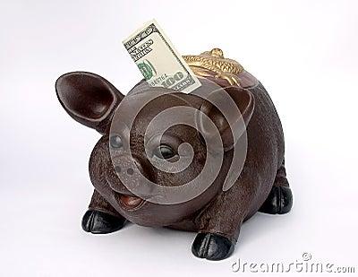Porcellino salvadanaio con gli Stati Uniti cento dollari in scanalatura