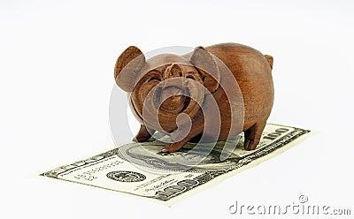 Porcos e dinheiro