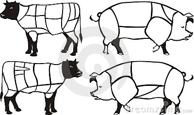 Pork & beef diagrams