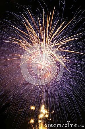 Porpora e fuoco d artificio del champagne.