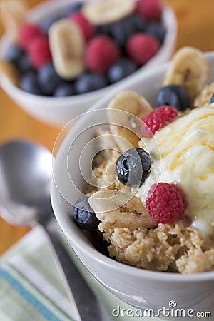 Porridge oats & fruit