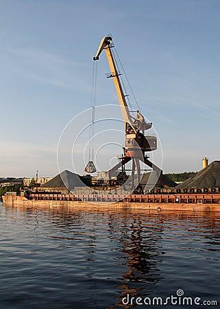 Port bulk crane