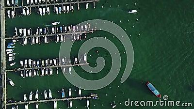 port de yacht de Pattaya d'ot de la vue 4K aérienne banque de vidéos
