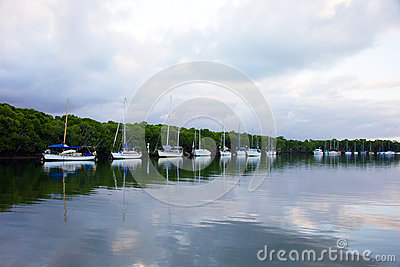 Port Douglas river landscape