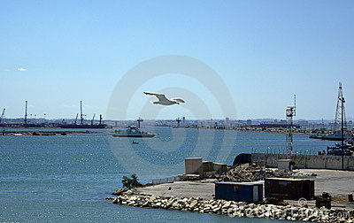 Port of tunis