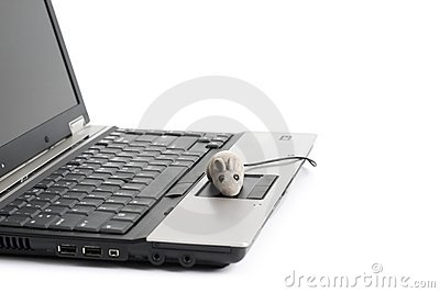 Portable computer and mouse