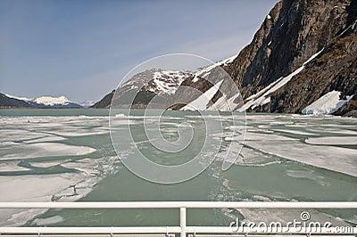 Portage Bay glacier melt