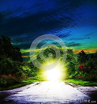 Portal to Eden