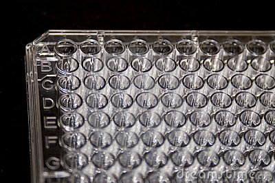 Portion of a 96-well assay plate