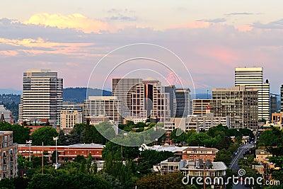 Portland Vista