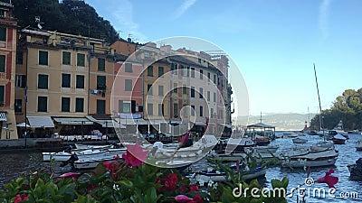 Portofino Italian village in Liguria region, Italy. Splendid landscape and view, water, flowers and touristic attraction. Portofino is an Italian fishing village stock video footage