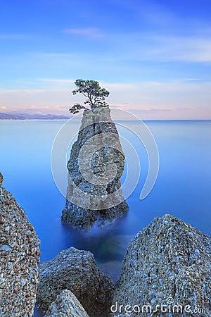 Portofino park. Pine tree rock cliff. Long exposure. Liguria, Italy