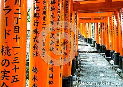 Portoni di Torii al santuario 1 di Fushimi-Inari