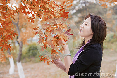 Portrait of an Asian girl Royalty Free Stock Photo