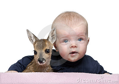 Portrait of baby boy with Fallow Deer Fawn