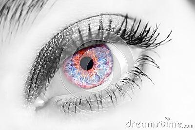 Portrait of a beautiful female blue eye