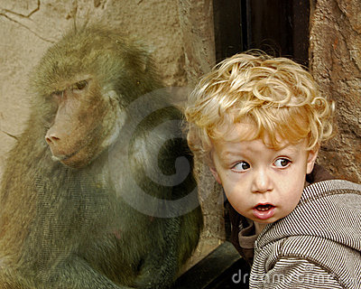 Portrait of boy and baboon