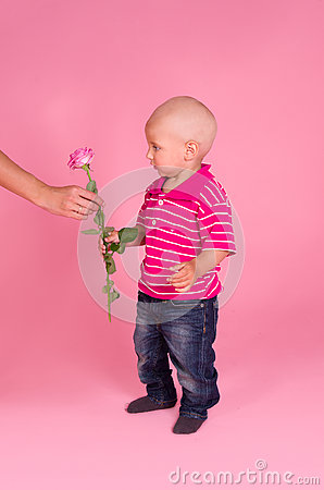Portrait of boy with a rose in hand