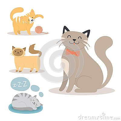 Portrait cat animal sleep pet cute kitten purebred feline kitty domestic fur adorable mammal character vector Vector Illustration