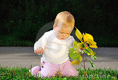 Portrait of child holding yellow leaves
