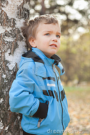 Portrait of dreamy boy about Birch, Fall, fleet