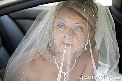 Portrait of fiancee under bridal veil